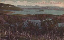 Noruega, Fra Jansvandsskoven Ved Hammerfest. Eneberettiget Hagens Forltag. N.190 - Norwegen