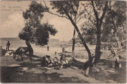 Picnic, Balmoral, Sydney, New South Wales - Vintage PC, 1900-1920, Unused - Sydney