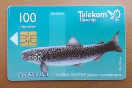 SLOVENIA Phonecard FISH Soska Postrv 100 Impulz - Slovenia