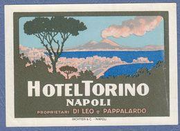 Hotel Torino Napoli Italy Italia- Vintage Original Hotel Label - Adesivi Di Alberghi
