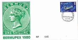 33298. Carta CASTLE HARBOUR (Bermuda) 1980.  Exposicion BERMUPEX 80 - Bermudas