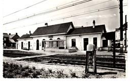 KAPELLEN - Statie - 1988 - Met Stempel Van De Dorpsdag - C - Kapellen