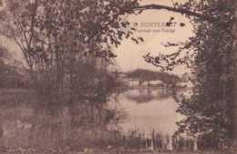 Hoeilaart - Hoeylaert - Paysage Aux étangs - Pas Circulé - TBE - Hoeilaart