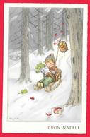 BUON NATALE -  LANTERNA - FUNGHI - MUSHROOMS - Natale