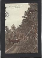 CPA TAHITI Océanie Poynésie écrite Moréa - Tahiti