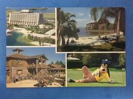 POST CARD CARTOLINA FORMATO GRANDE WALT DISNEY WORLD - Disneyworld