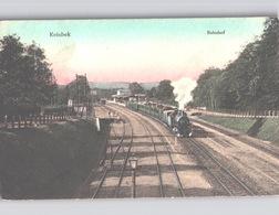 REINBEK BAHNHOF Mit Dampflok Farbig 1912 - Reinbek