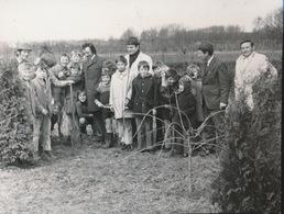 OORDEGEM   --- FOTO 1973    9 X 8 CM     BOOMPLANTING - Lede
