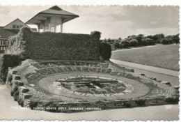 PC16668 The Floral Clock. White Gardens. Hastings. Shoesmith And Etheridge. RP. 1960 - Postcards