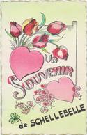 Wichelen - Deelgemeente Schellebelle - Un Souvernir De .... - Wichelen