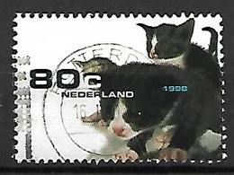 PAYS - BAS    -   1998.   Y&T  N° 1648 Oblitéré.   Chatons - 1980-... (Beatrix)