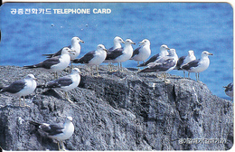 SOUTH KOREA - Birds, Black Tailed Gull(reverse Letter W, W2000), 01/98, Used - Korea, South
