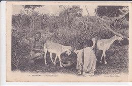 Bergère Seins Nus Trayant Une Chèvre. Dos Adresse TBE Non écrite - Senegal