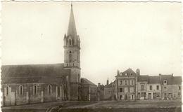 Cpsm Pf - 49 - CHALONNES SUR LOIRE -  L'Eglise St-Maurille  3 - Chalonnes Sur Loire