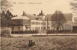 Opont - Château De Beth - Circulé 1929  - Edit Droguet Soeurs, Opont - SUPER - Paliseul