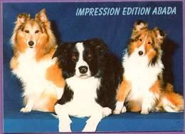 Calendrier °° 1998 - Impression Edition Abada - Chiens - 6x9 - Calendarios