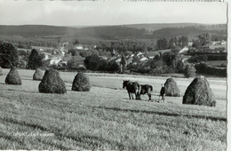 Opont - La Fenaison  - Pas Circulé - Smetz / Melle L. Ansiaux, Economie Populaire - Paliseul
