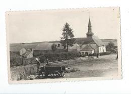 Opont - Eglise, Abreuvoir Et Homme - Pas Circulé - MOSA 1261 - Paliseul