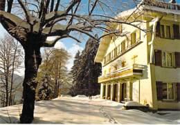 88 - GERARDMER : HOTEL De La FORET ( Logis De France ) CPM Grand Format - Vosges - Gerardmer