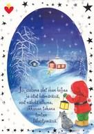 Postal Stationery - Bullfinches - Birds - Elf & Cat Lighting - Finnish Heart Association - Suomi Finland - Postage Paid - Finlandia