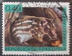 VENEZUELA 1963 Venezuelan Wild Life. USADO - USED. - Venezuela