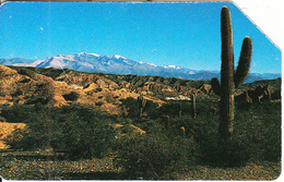 ARGENTINA(Urmet) - Desert, Telecom Argentina Telecard, Used - Landscapes