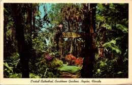 Florida Naples Caribbean Gardens Orchid Cathedral 1967 - Naples