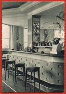 Nice - Le Perroquet- Grill-Bar De L'Hotel Albert 1er- 4 Avenue Des Phocéens- Recto Verso -Paypal Sans Frais - Cafés, Hotels, Restaurants