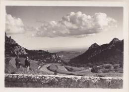 Photo Carte De Palma De Majorque Col De Soller Août 1931 Par Le Photographe S.Yovanovitch à Bordeaux Format 18 X 12,5 Cm - Mallorca