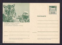 20 Pf. Bild-GS Tiger Münster  Ungebraucht - Félins