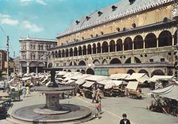 PADOVA - PIAZZA DELLE ERBE - PALAZZO DELLA RAGIONE - MERCATO - TENDA PUBBLICITARIA BIRRA ITALA PILSEN - 1962 - Padova (Padua)