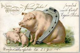 51559892 - Hufeisen Neujahr - Schweine