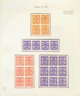 Nicaragua. (*)Yv . 1890. Espectacular Conjunto De ENSAYOS DE COLOR En Bloques De Diferentes Tamaños De Diversos Valores  - Nicaragua