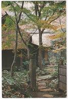 Mitaka, Tokyo - Taizanso Tea House - (International Christian University) - (Nippon/Japan) - Tokyo