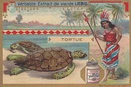 CHROMO IMAGE) LIEBIG  LA PECHE (tortue)  (parfait Etat Pas De Coins Arrondis) - Liebig