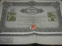 AZIONE MOTTA TITOLO DA 10 AZIONI - M - O