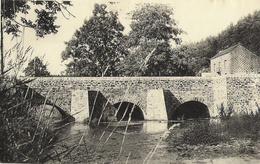 OUR (Paliseul) - Vallée De L'Our Et Pont En Aval + Maison - Pas Circulé - Ern. Thill - - Paliseul