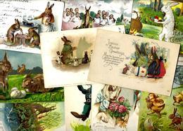 Lot 1800 De 10 CPA Lapins Bunny Dont Position Humaine Fantaisies Déstockage Pour Revendeurs Ou Collectionneurs - 5 - 99 Cartoline