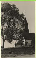 OUR (Paliseul) - Eglise Et Vieilles Tombes - Pas Circulé - Photo Carte Gevaert - Paliseul