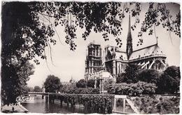 183  Paris - Notre-Dame - Notre-Dame De Paris