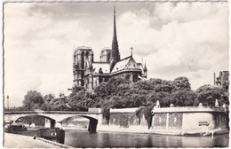 Paris - La Cathédrale Notre-Dame Métropolitaine De Paris Et La Pointe De L'Ile Saint-Louis - 'Factum' Bateau - Notre-Dame De Paris