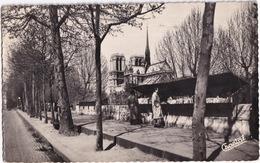 Paris - Les Bouquinistes Sur Les Quais - Notre-Dame - Notre-Dame De Paris