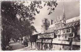 211 - Paris Artistique - Les Quais De La Seine Et Notre-Dame - Notre-Dame De Paris