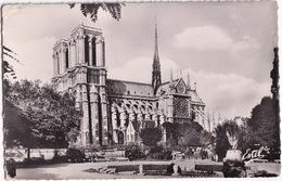 Paris - Notre-Dame Vue Du Square Viviani - Notre-Dame De Paris
