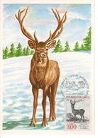 Carte Maximum 1er Jour 1988 Maximum Card  FDC  Cerf, Stag, Hirsch - Stamps