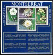 Montserrat HB 13 En Nuevo - Montserrat