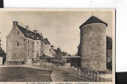 LES CHATELETS  N 8   VIEUX MANOIR  LE COLOMBIER GROS PLAN DEPT 28 - France