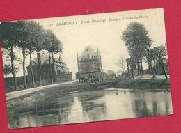 C.P. Geraardsbergen  =Vieille  Montagne  : Etang  Et Château  DE CLERCQ - Geraardsbergen