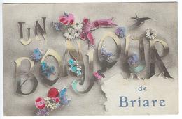BRIARE - BONJOUR DE - Briare