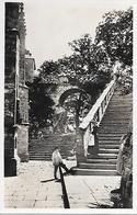 LE FAOUET - ( 29 ) - L'arche St-Barbe      ( C.P.S.M.-Pt-Ft ) - France